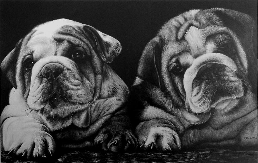 Puppies Drawing - Puppies by Jerry Winick