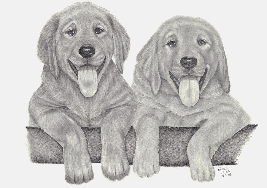 Puppy Love Drawing  - Puppy Love Fine Art Print