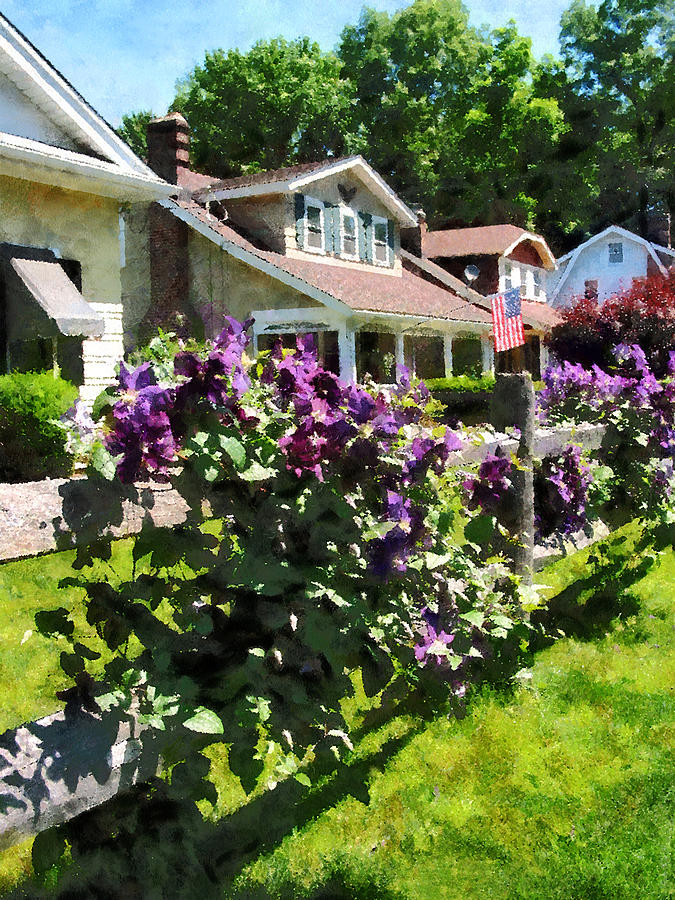Purple Clematis On Rustic Fence Photograph