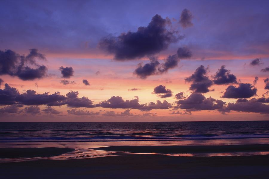 Purple Morning Photograph
