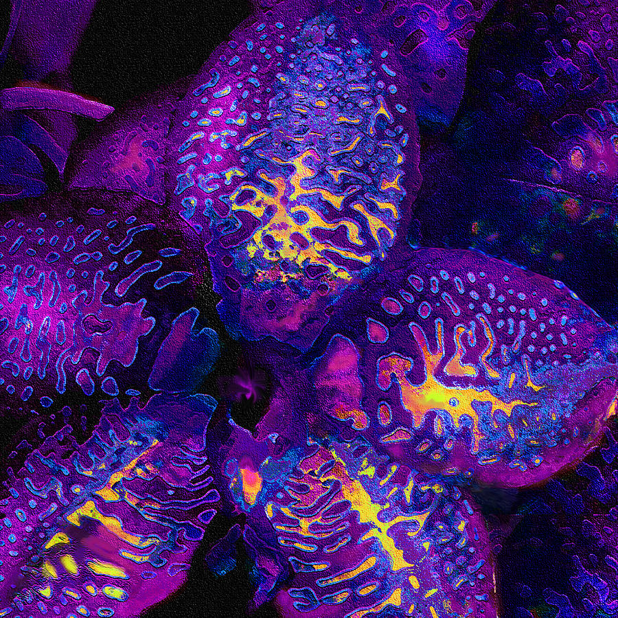 Purple Orchid Abstract Digital Art