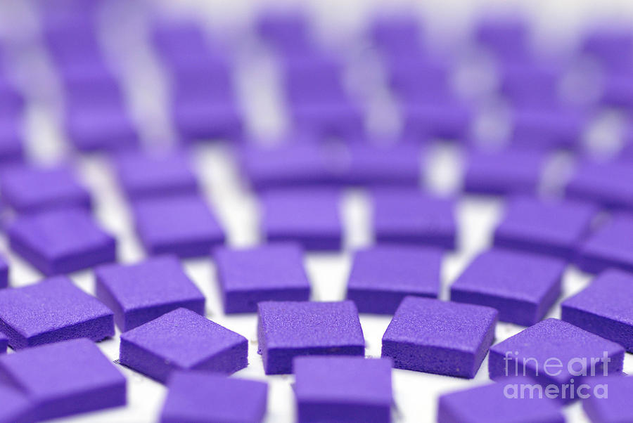 Purple Pattern Photograph