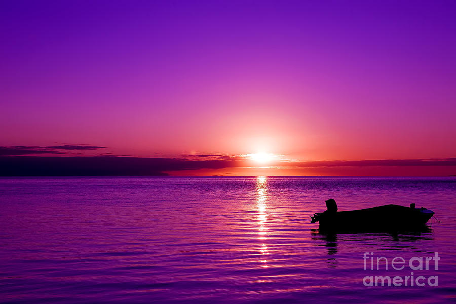 Purple Sunrise Photograph By Yew Kwang
