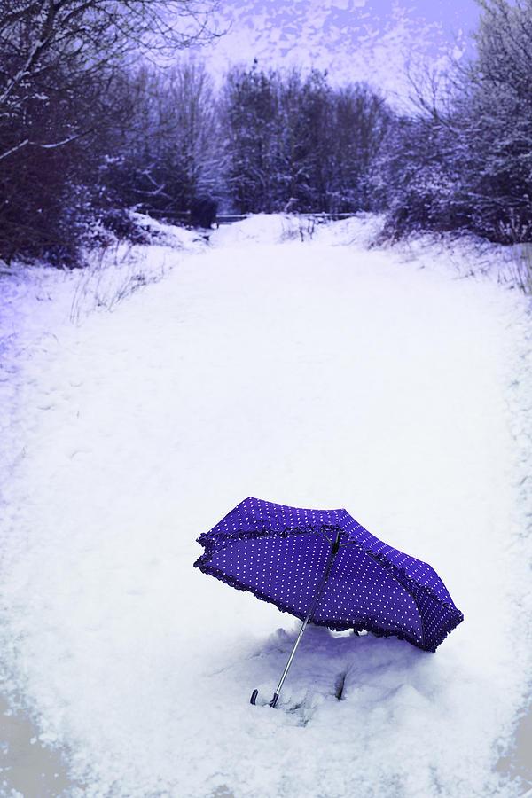 Umbrella Photograph - Purple Umbrella by Amanda Elwell