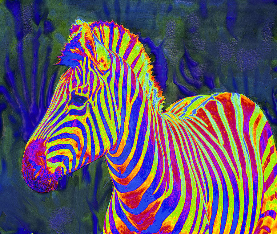 Pyschedelic Zebra Digital Art  - Pyschedelic Zebra Fine Art Print