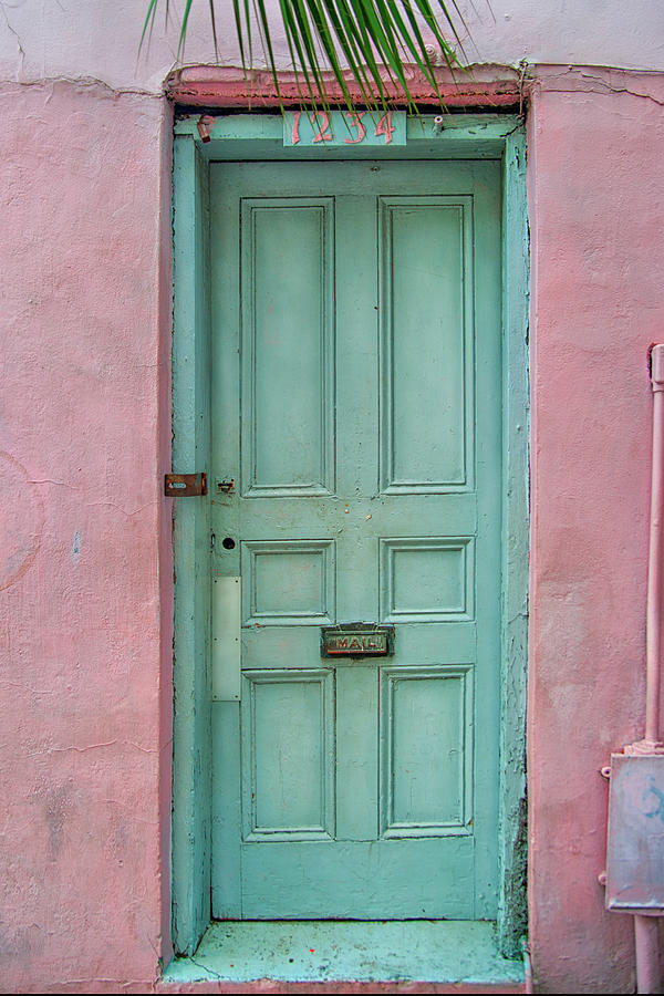 Quaint Little Door In The Quarter Photograph  - Quaint Little Door In The Quarter Fine Art Print