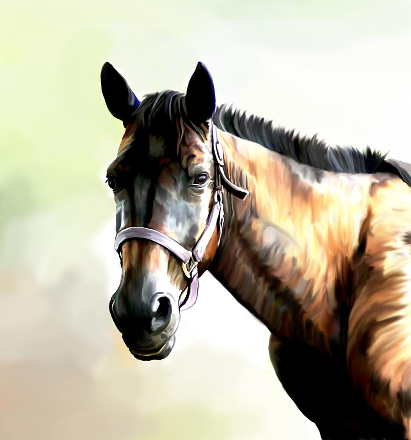 Quarter Horse Digital Art