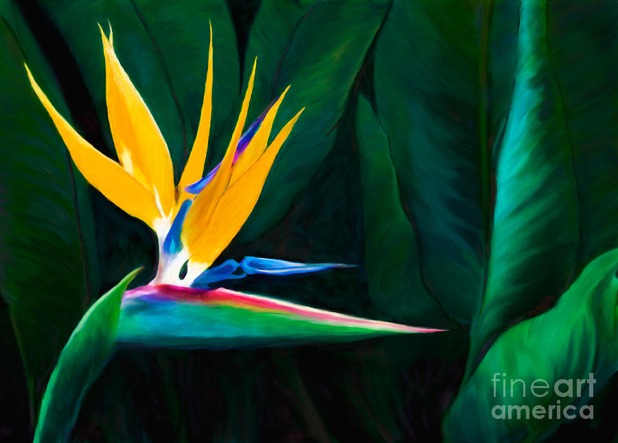Queen Of The Garden Bird Of Paradise Flower Painting  - Queen Of The Garden Bird Of Paradise Flower Fine Art Print