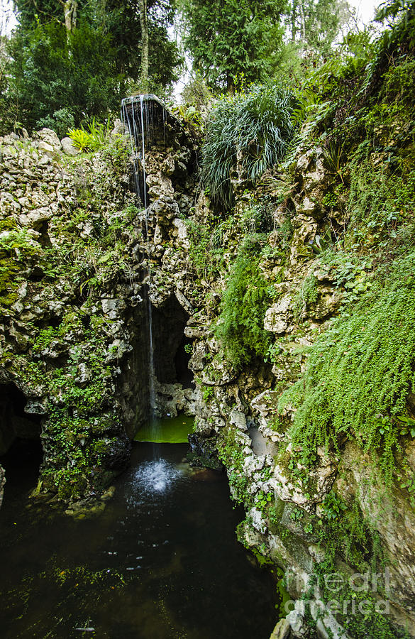 Quinta Da Regaleira Grotto Photograph
