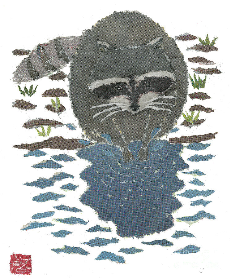 Raccoon Cleans Paws  Painting  - Raccoon Cleans Paws  Fine Art Print