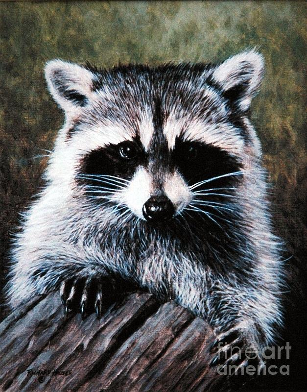 Raccoon Portrait Painting by Richard Hauser Raccoon Painting