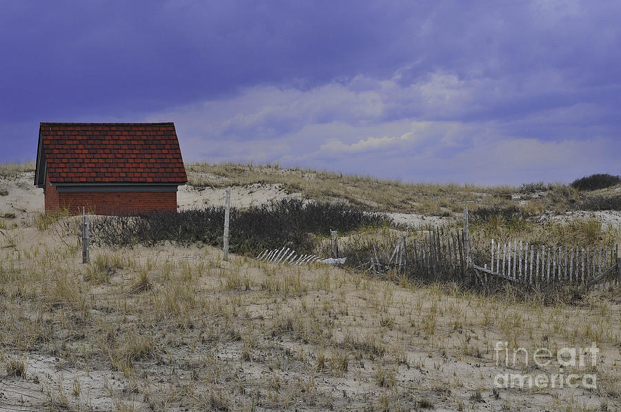 Race Point Light Shed Photograph - Race Point Light Shed by Catherine Reusch  Daley