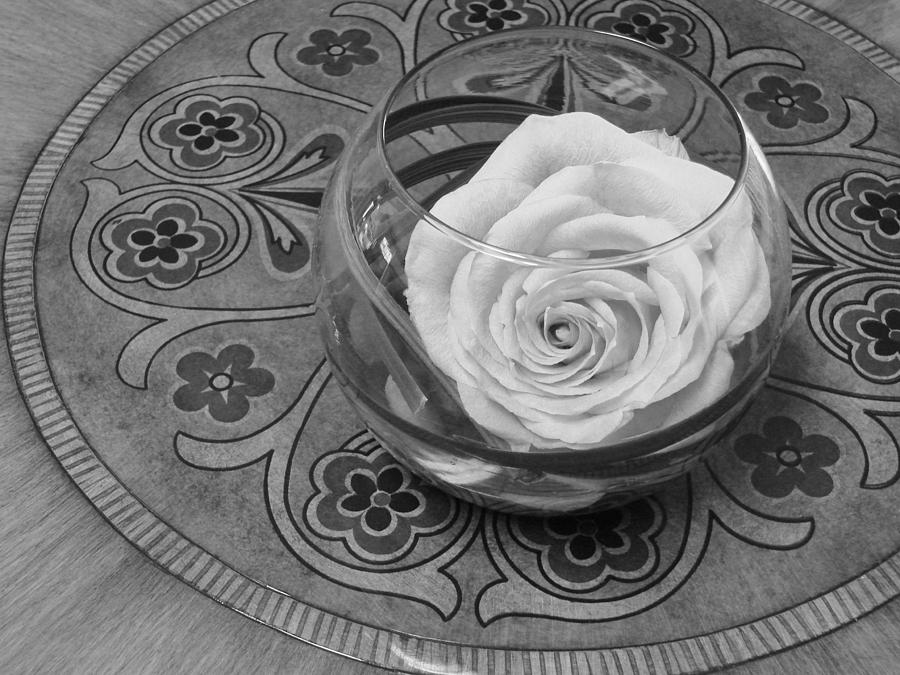 Rachels Rose 1 In Black And White Photograph  - Rachels Rose 1 In Black And White Fine Art Print