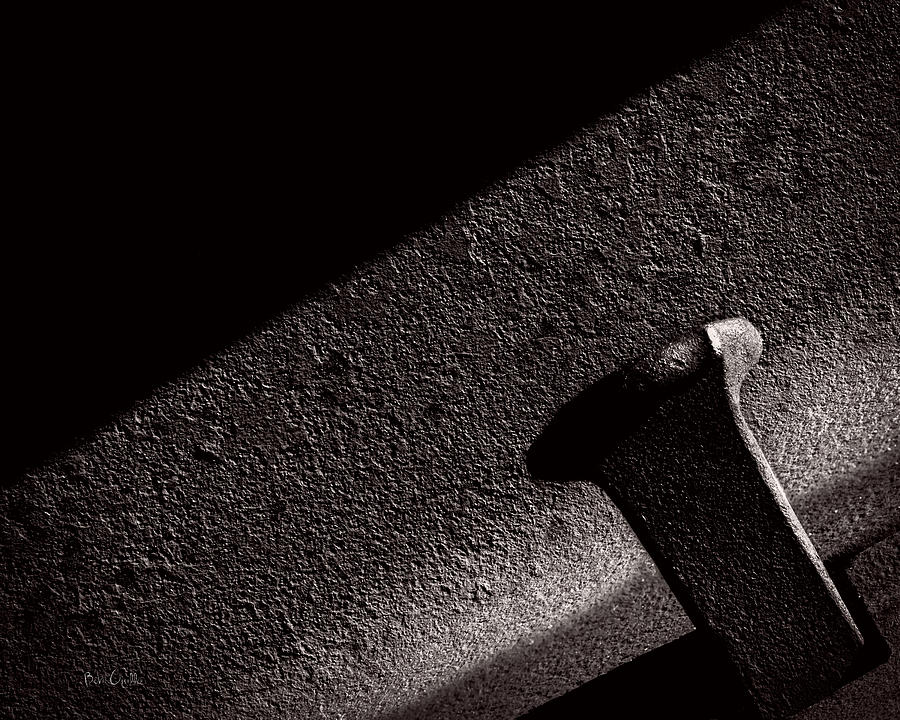 Railroad Spike And Rail Photograph