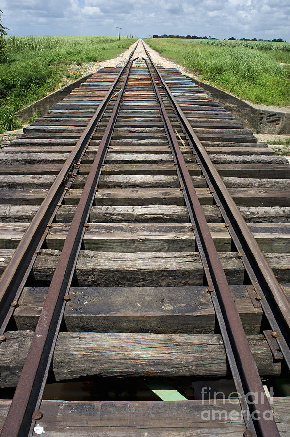 Nature Photograph - Railroad Tracks by Sami Sarkis
