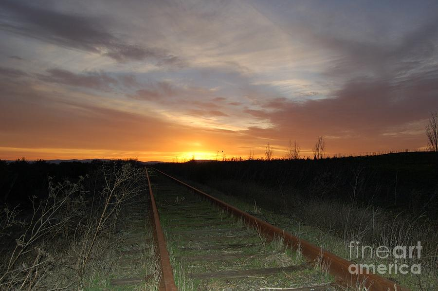 Railway To Wine Country Photograph  - Railway To Wine Country Fine Art Print