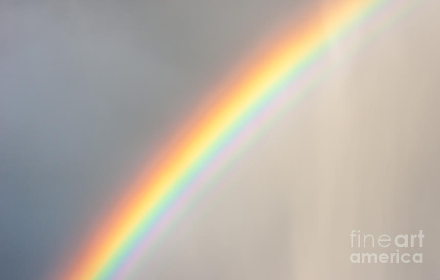 Rainbow In The Rain Photograph  - Rainbow In The Rain Fine Art Print