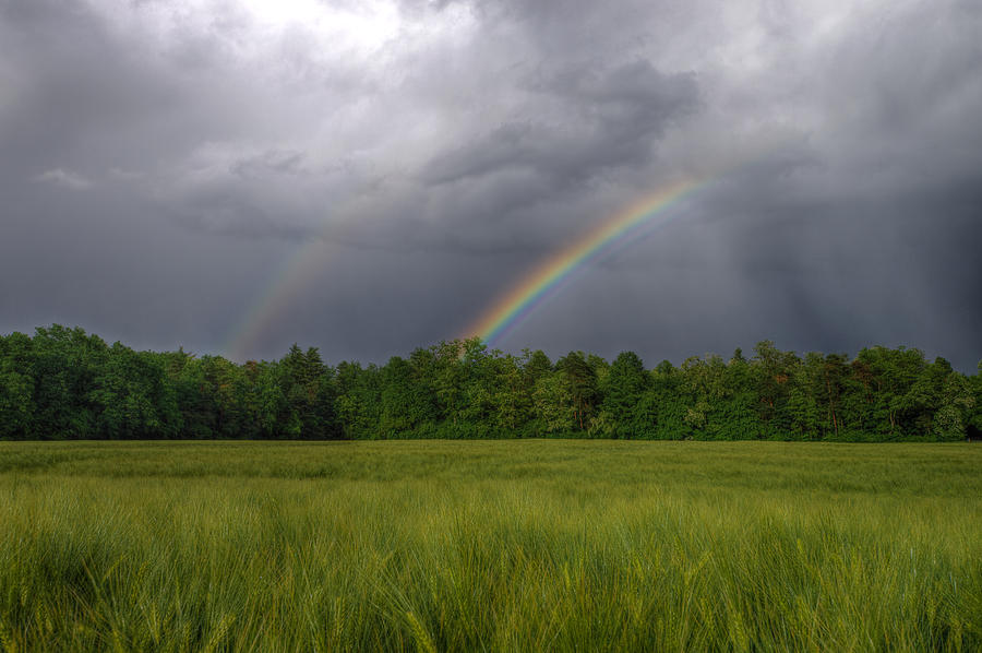 Agricultural Photograph - Rainbow by Ivan Slosar