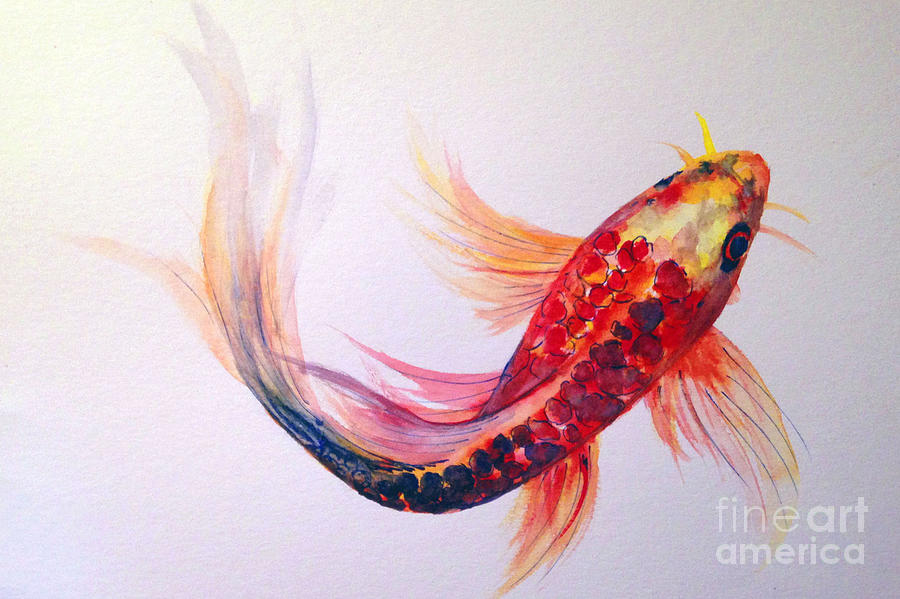 rainbow koi painting by lauren heller