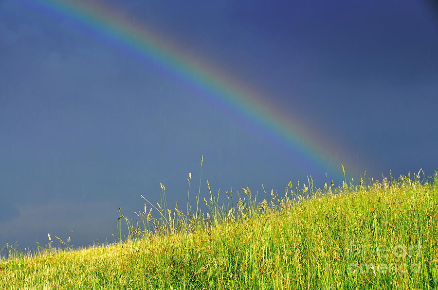Rainbow Over Pasture Field Photograph  - Rainbow Over Pasture Field Fine Art Print