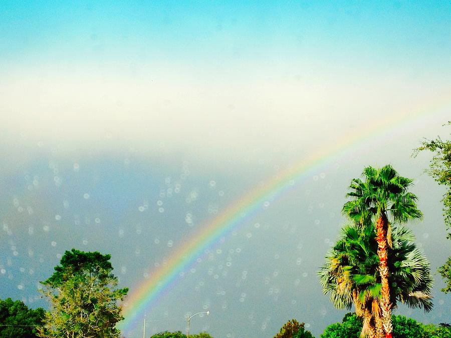 Rainbow Through The Rain Photograph - 76.4KB