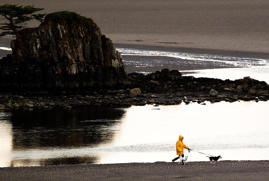 Raincoat Dog Walk Photograph