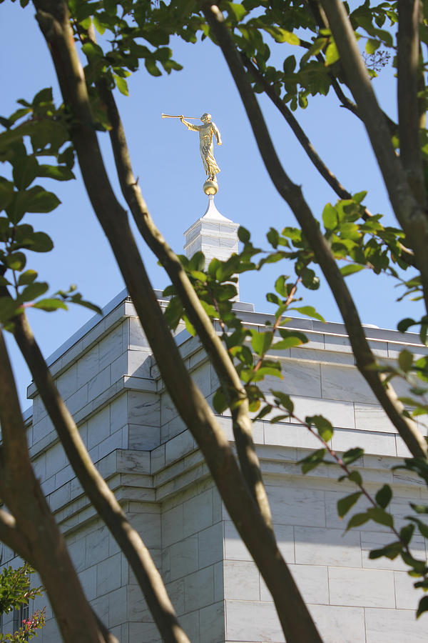 Raleigh Nc Lds Temple Photograph  - Raleigh Nc Lds Temple Fine Art Print