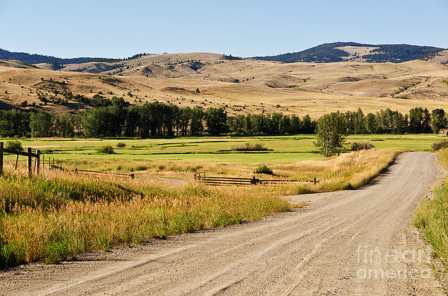 Ranch Land Along A Gravel Road Photograph  - Ranch Land Along A Gravel Road Fine Art Print