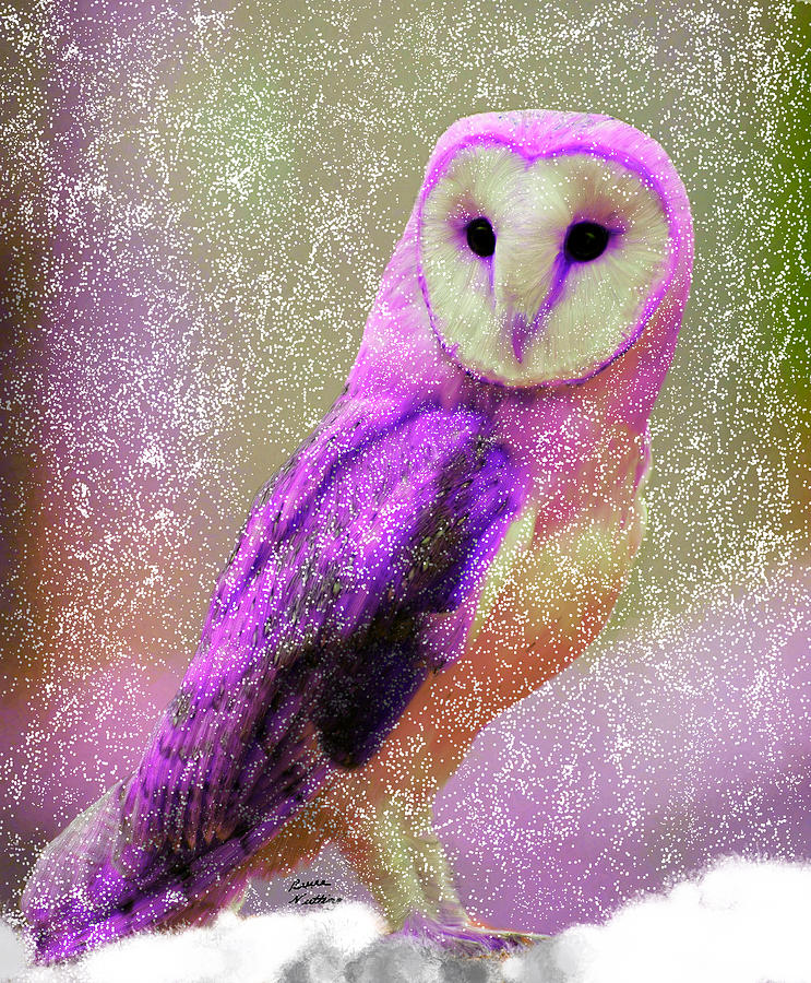 Rare Pink Owl In A Snow Storm by Bruce Nutting: fineartamerica.com/featured/rare-pink-owl-in-a-snow-storm-bruce...