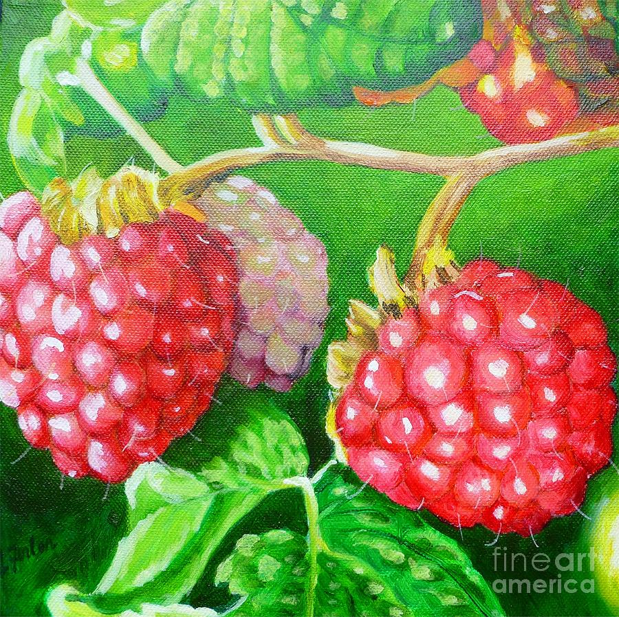 Raspberries Painting - Raspberry Ripening by Lorraine Fenlon