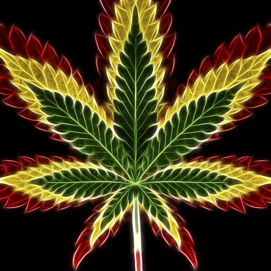 3scape Photos Photograph - Rasta Marijuana by Adam Romanowicz