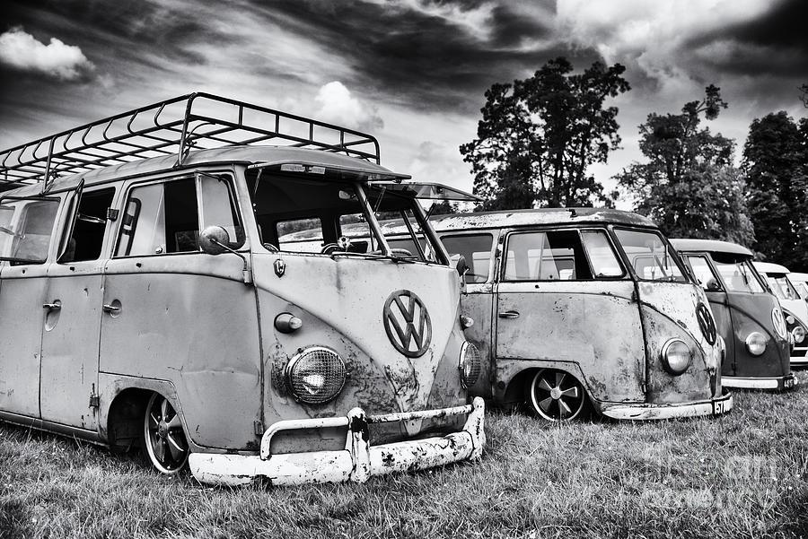 Rat Vans Photograph