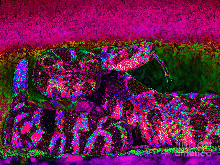 Rattlesnake 20130204m80 Photograph