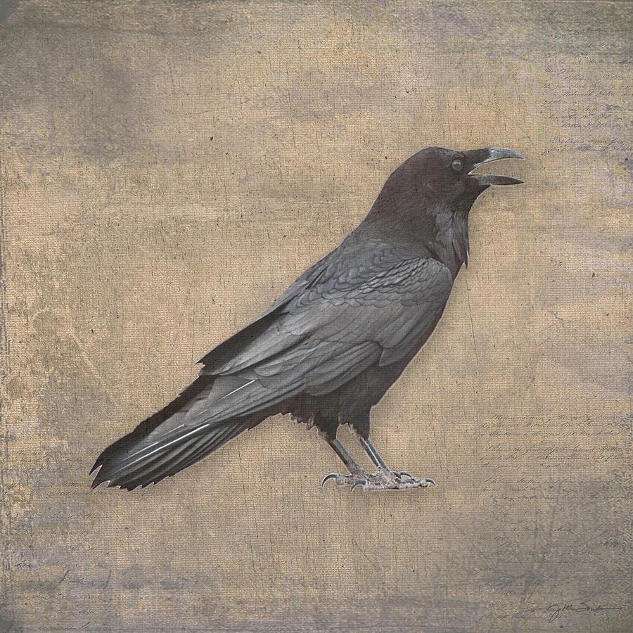 Raven Digital Art In Old