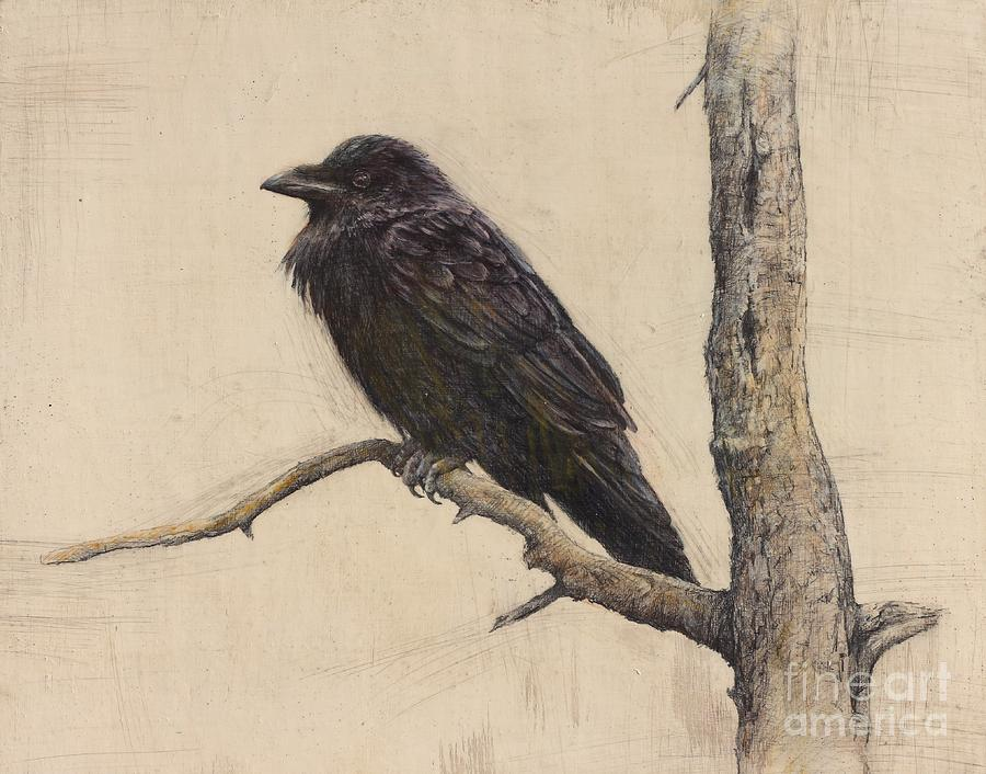Raven Bird Drawing - Raven by Lori  McNee