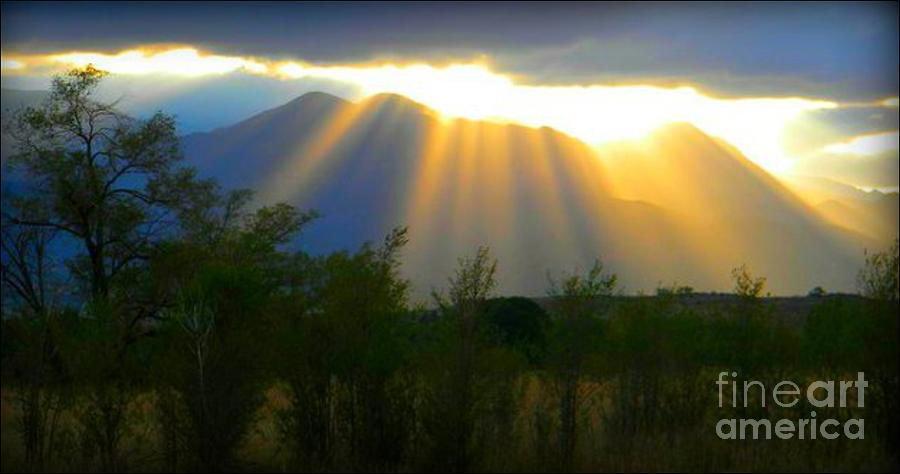 Rays From Heaven Photograph  - Rays From Heaven Fine Art Print