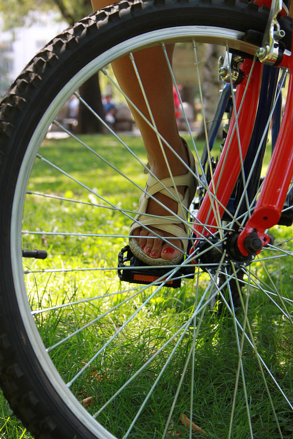 Bicycle Photograph - Recreation by Diana Dimitrova