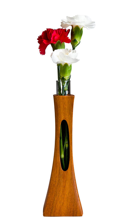 Red And White Spray Carnations In Teak Vase Photograph  - Red And White Spray Carnations In Teak Vase Fine Art Print