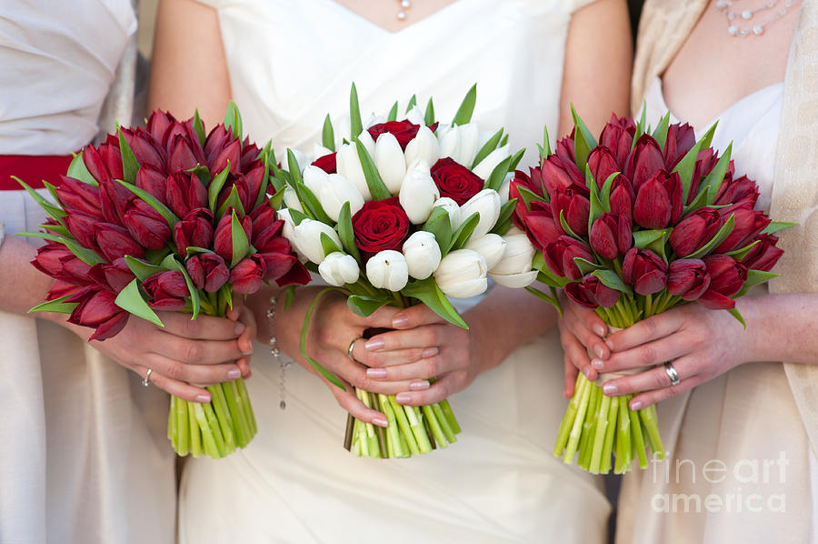 Red And White Tulip And Rose Wedding Bouquets Photograph