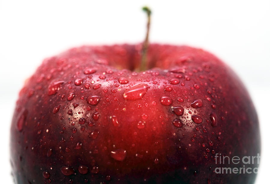 Red Apple Top Photograph  - Red Apple Top Fine Art Print