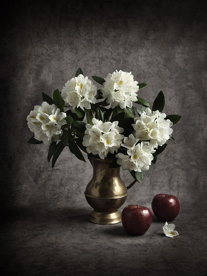 Red Apples And White Rhododendron Photograph  - Red Apples And White Rhododendron Fine Art Print