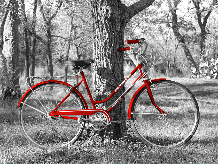 Red Bicycle Photograph