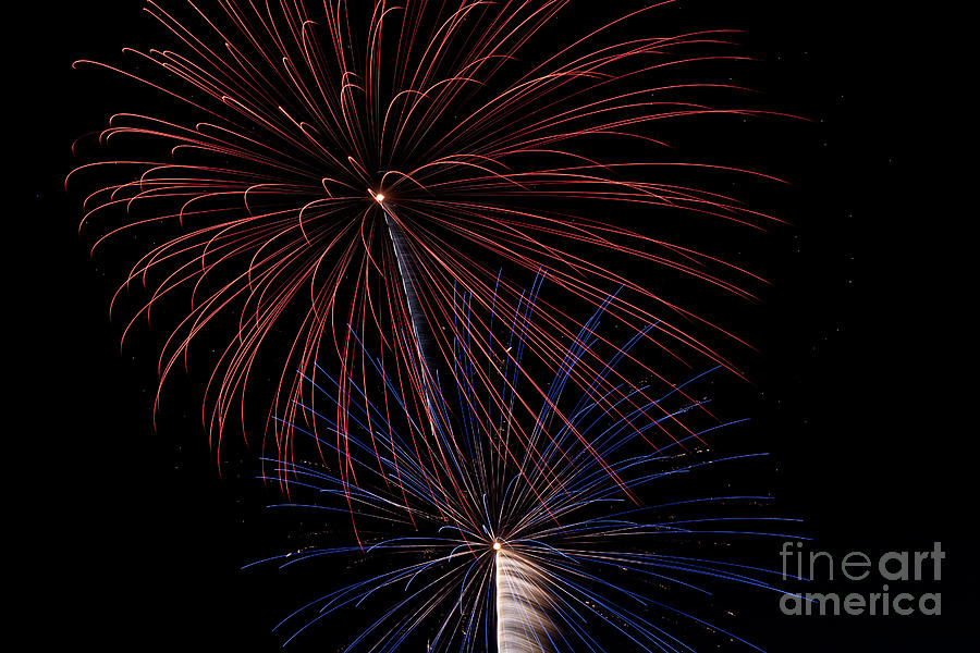 Red Blue Fireworks Photograph