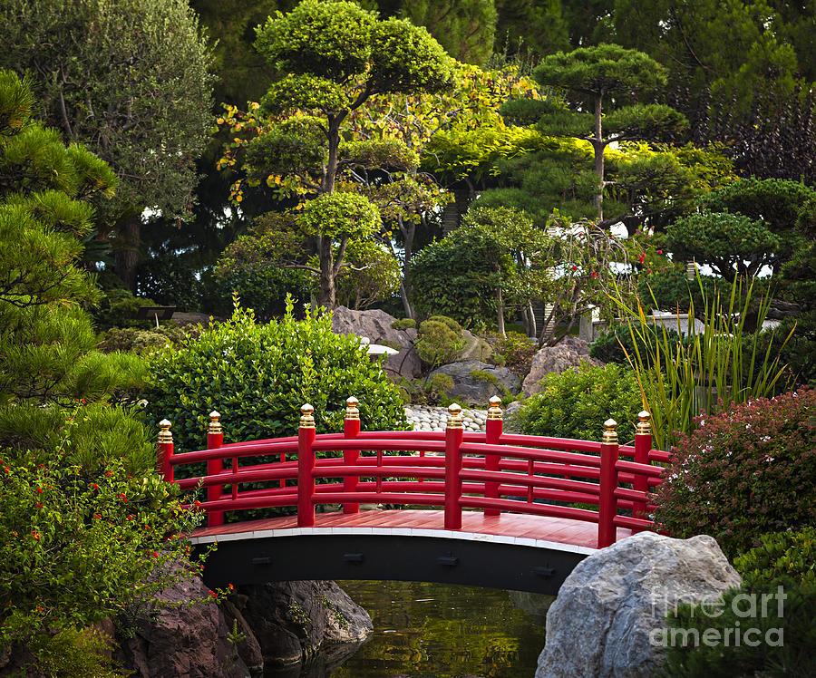 Red bridge in japanese garden photograph by elena elisseeva for Japanese garden bridge