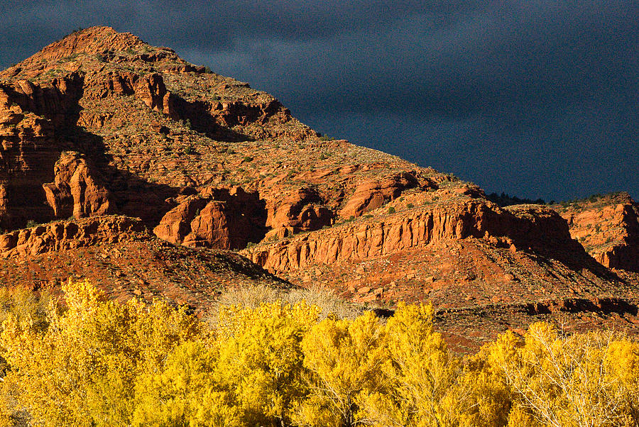 Red Cliffs National Recreation Area Fall Colors Leeds Utah Photograph