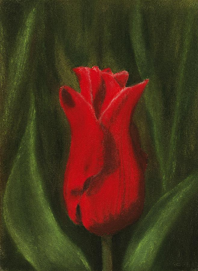 Red Elegance Painting