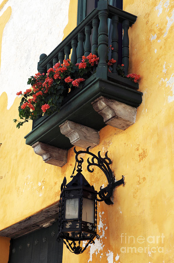 Red Flowers In Cartagena Photograph