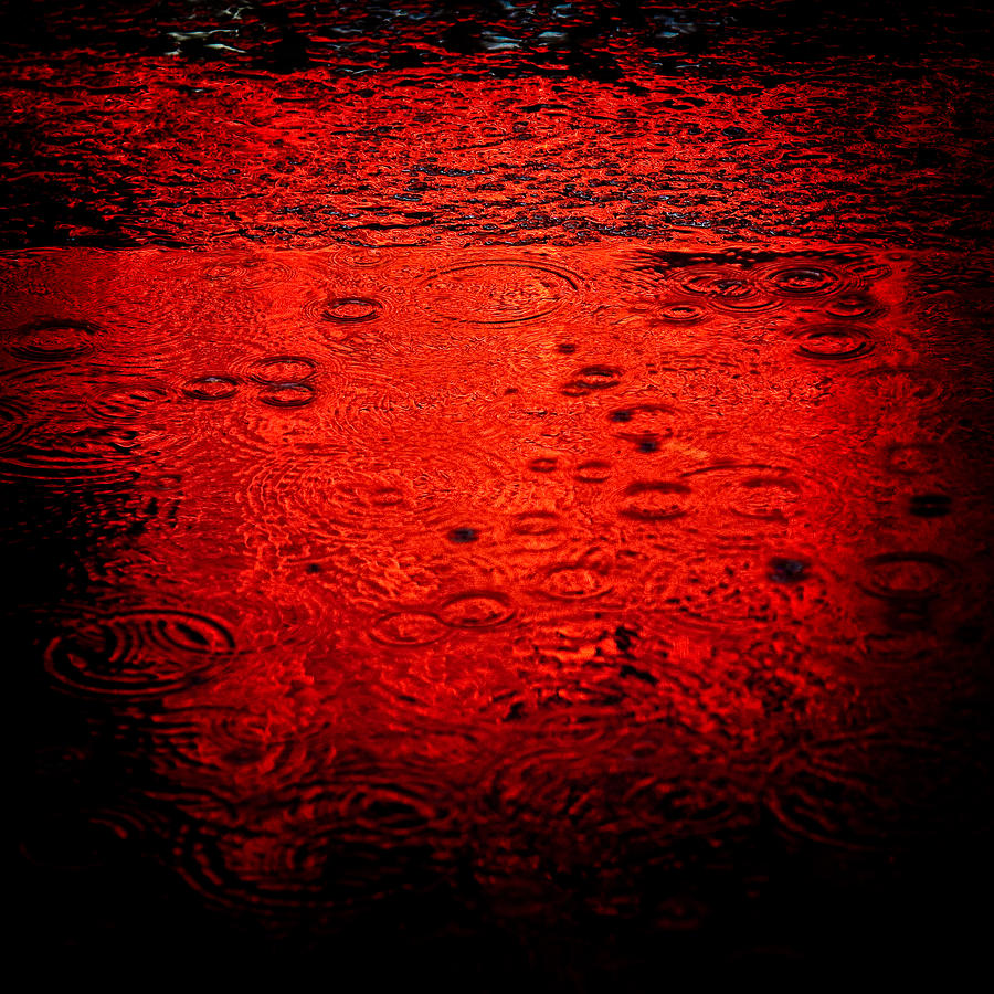 Red Rain Photograph  - Red Rain Fine Art Print