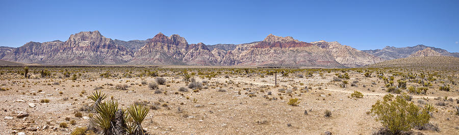 Red Rock Canyon Panorama Nevada. Photograph  - Red Rock Canyon Panorama Nevada. Fine Art Print