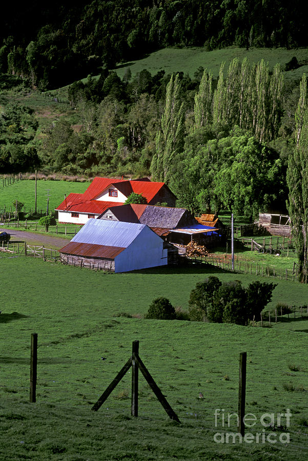 Red Roofed Barn Chiloe Island Photograph